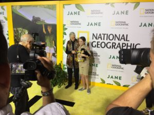 "Dr. Goodall on the ""yellow"" carpet with her young friend"